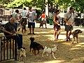 Tompkins Square Big Dog Run.JPG