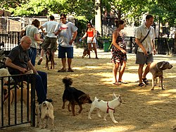 Tompkins Square Big Dog Run.JPG
