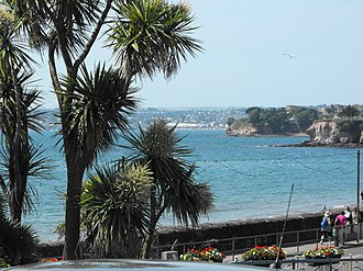 Torbay - Looking towards Paignton from Torquay. Torbay palms in the foreground.