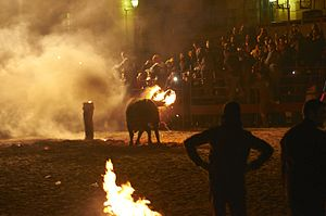 Sadistic Spanish Festival
