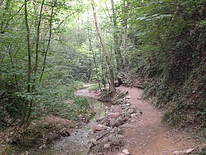 Torrent de Colobrers (juliol 2011) - panoramio.jpg