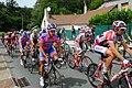 Tour de France 2011 étape 7 sortie Chaumont peloton 8.jpg