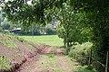 Track to Morton House Farm - geograph.org.uk - 815577.jpg