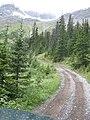 Trail (2820256276).jpg