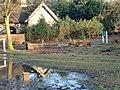 Trent Park Reflection - geograph.org.uk - 1671491.jpg