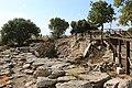 Troy National Park 1.jpg