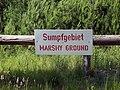 Truppenübungsplatz-Bergen-Marshy-Ground.jpg