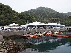 Tsukumi irukajima.jpg