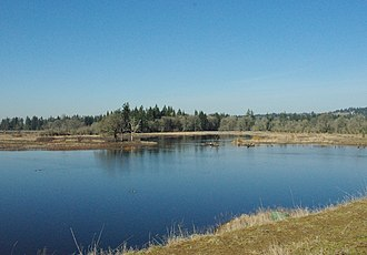Tualatin River National Wildlife Refuge - Pond at the park with woodlands in background