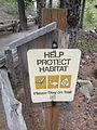Tumalo Creek, Central Oregon (2013) - 05.JPG