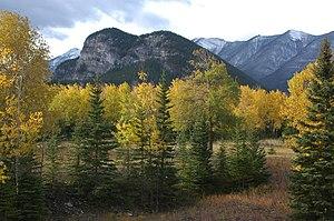 Harvey Locke - Tunnel Mountain, Banff, from the north. Photo by Harvey Locke.