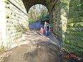Tunnel beneath dismantled railway at Wilton Park. - geograph.org.uk - 54180.jpg
