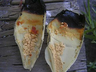 Ear candling - Material that appears after ear candling, sometimes alleged to be earwax and toxins, was found to be residue from the candle itself.