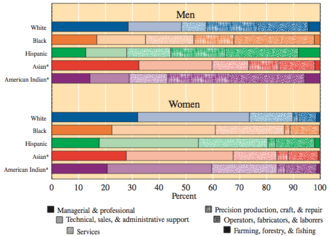Racial wage gap in the United States - Image: US occpuational distribution