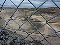 Up to the wire - geograph.org.uk - 1773475.jpg
