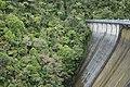 Upper Nihotupu Dam from the top.jpg