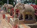 VAIKUNTAM-T.B.Dsm-Dr. Murali Mohan Gurram (15).jpg