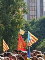 V catalana P1250538.jpg