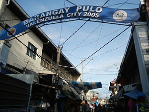 Polo, Valenzuela - Welcome arch