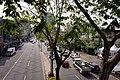 View of Zhongqing Road near Hankou Road, Taichung 09.jpg