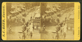 View of a parade, by S. C. Reed.png