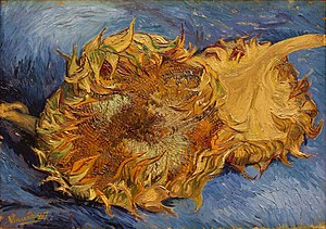 Sunflowers (Van Gogh series) - Sunflowers (F375), Oil on canvas, 43.2 x 61 cm, Metropolitan Museum of Art, New York