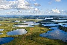 Vontut National Park.jpg