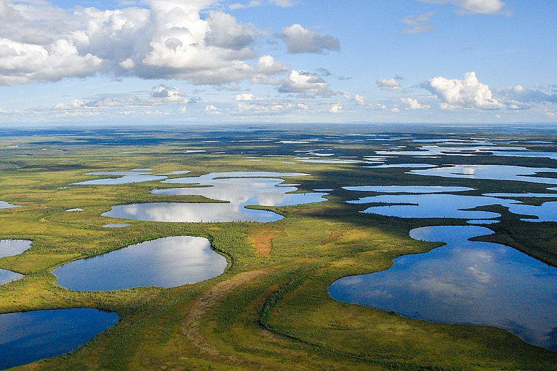 flooded wetlands of Vuntut National Park, a place in Yukon