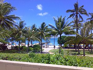 The view of the Waikiki Beach from the roof of...