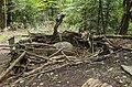 Waldmenschen Skulpturenpfad (Freiburg) jm9650.jpg