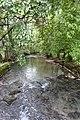 Walk along the Thiou river @ Annecy (34803937044).jpg