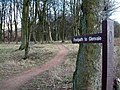 Walk this way - geograph.org.uk - 140960.jpg