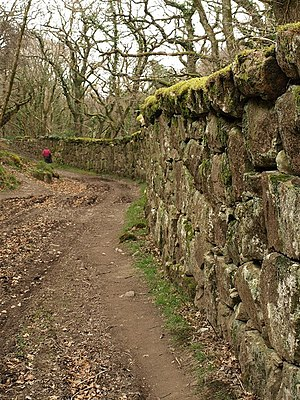 Whiddon, Chagford - Image: Wall of Whiddon Deer Park geograph.org.uk 1243628