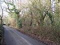 Walnut Wood on Walnut Wood Road - geograph.org.uk - 1147607.jpg