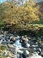 Waterfall Lingmell Gill - geograph.org.uk - 135812.jpg