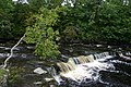 Waterfall on the River Wear - geograph.org.uk - 77026.jpg