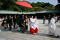 Wedding, Yoyogi Park (2562137428).jpg