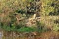 Weener - Hessepark - Hessepark 052 ies.jpg