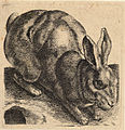Wenceslas Hollar - Crouching hare.jpg