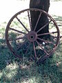 Wheel with rivetted metal spokes and tyre near Elliot, Eastern Cape.jpg