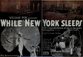 While New York Sleeps by Charles J. Brabin.png
