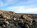 Whitburn Rocks - geograph.org.uk - 1249622.jpg