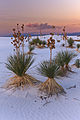 White Sands-New Mexico-Oct2010-9400.jpg