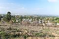 Whittier CA seen from Hellman park (Peppergrass) trail.jpg