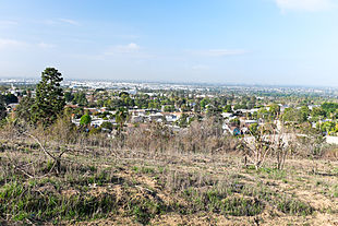 Skyline of Whittier, California.