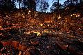Wiang Kosai National Park1.jpg