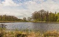 Wijnjeterper Schar, Natura 2000-gebied provincie Friesland 012.jpg