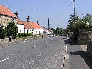 Winston, County Durham Village in County Durham, England