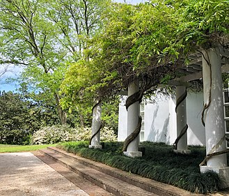 Pergola - This is a pergola covered by wisteria at a private home in Alabama.
