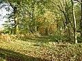 Woodland next to the railway - geograph.org.uk - 1036730.jpg